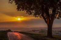 Sonnenaufgang Withoh-Tuttlingen